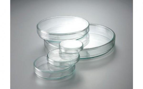 Petrischalen aus Glas